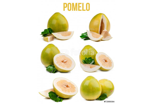 set of six compositions pomelo isolated 64239