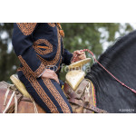 Mexican charro with traditional dress riding 64239