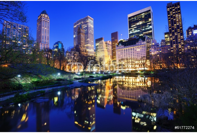 Central Park at Night in New York City 64239