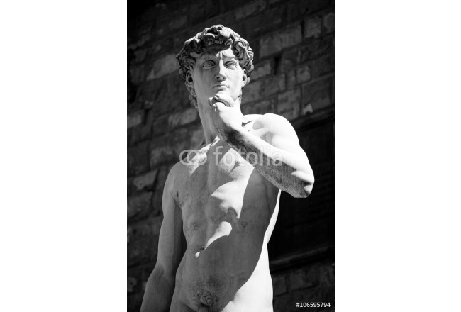 Copy of Michelangelo's David in Florence 64239