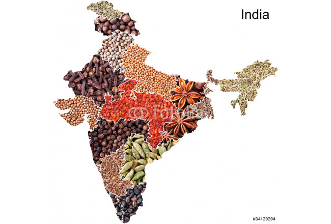 Art painting Map of India with spices 64239