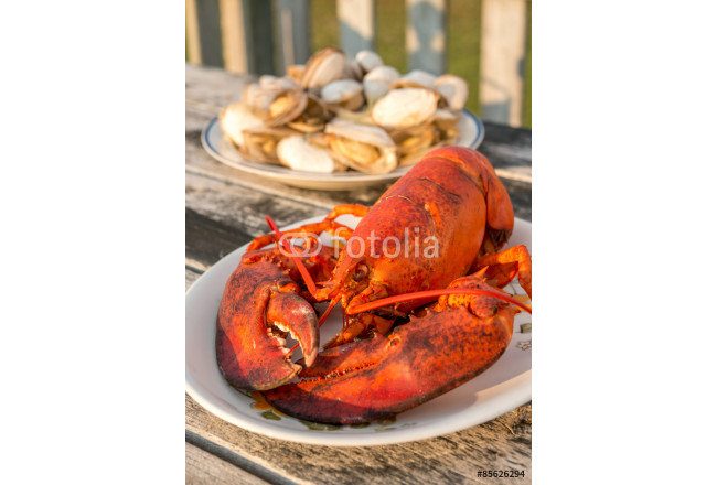 Lobster and Clam dinner at beach cottage of PEI, Canada 64239