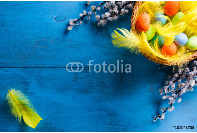 Easter Basket with easter eggs and yellow feathers and catkins on blue wooden background. 64239