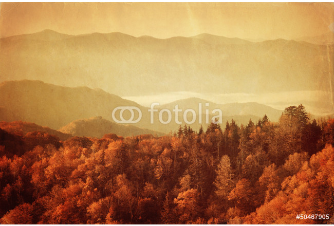 Old style image of Great Smoky Mountains National Park 64239