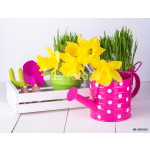 Spring flowers and green grass with garden tools . 64239