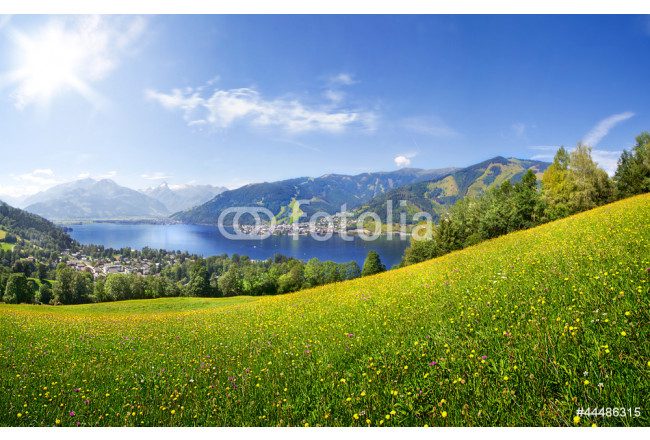 Panorama view over Zell am See, Austria 64239