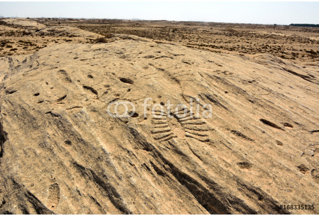 Ancient petroglyphs depicting fish and boats on a rock outcrop in Jebel Jassassiyeh in Northern Qatar. 64239