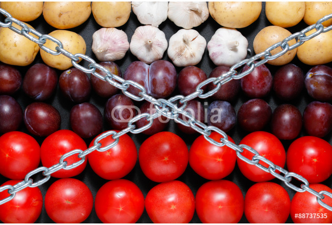Chain on a vegetables background, in context of sanctions and extermination of food in Russia 64239
