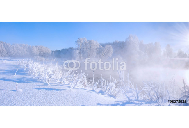 White frozen trees in winter morning, colorful winter sunrise, everything covered by snow and frost 64239