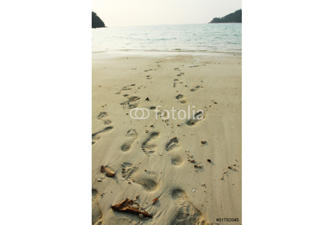 footprint, Many footprints on the beach, sea background. 64239