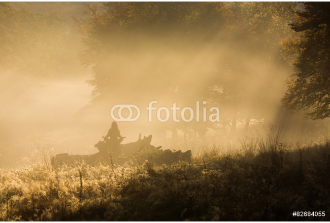 Silhouette of woman meditating in forest in a foggy morning 64239