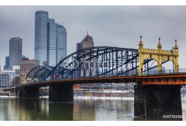 Colorful bridge with Pittsburgh, Pennsylvania skyline 64239