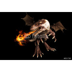Fire breathing dragon on a black background 64239