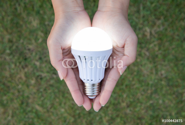 LED Bulb with lighting - saving technology in our hand 64239