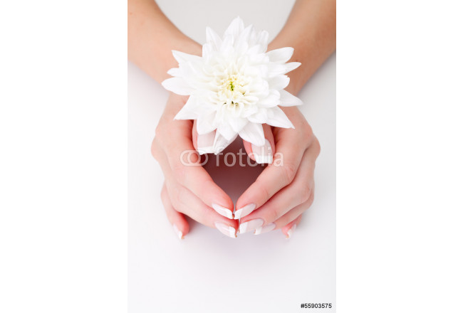 white flower with hands 64239