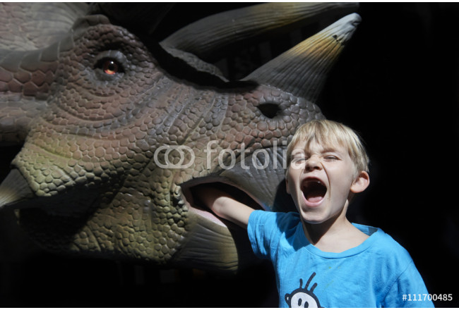 Screaming child boy playing / making fun with model of triceratops in life size 64239