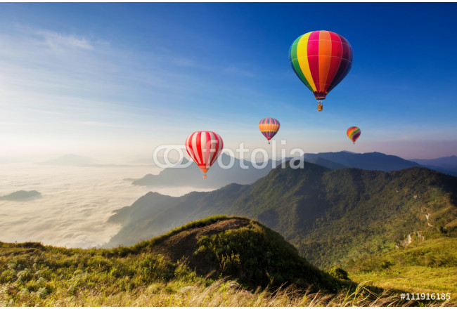 Quadro contemporaneo Colourful hot-air balloons flying over the mountain 64239