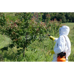 Pesticide spraying 64239