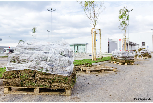 Pallet of sod rolls are wrapped in foil, unrolling grass 64239