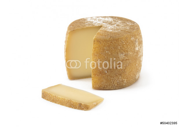 Spanish cheese on isolated background 64239