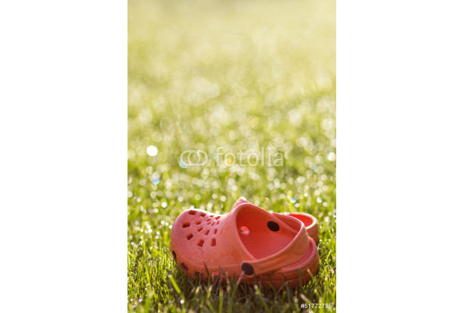 Rubber sandals in the grass 64239