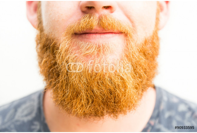 Closeup portrait of a man with ginger beard 64239
