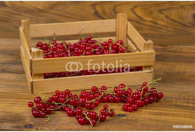 red currants 64239