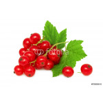 One bunch of ripe redcurrant with green leaves (isolated) 64239