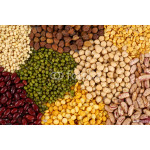 Variety of pulses 64239
