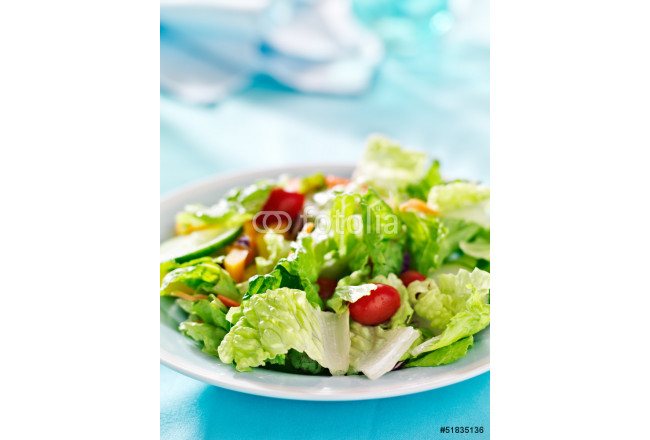 Obraz nowoczesny garden salad with fresh vegetables with copy space composition 64239