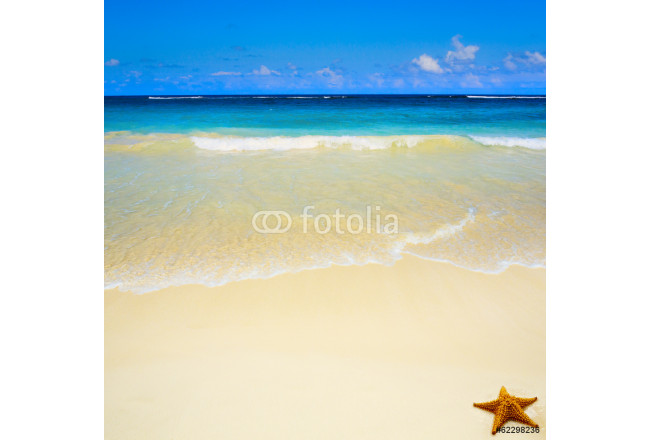 Art  beautiful untouched tropical sea beach 64239