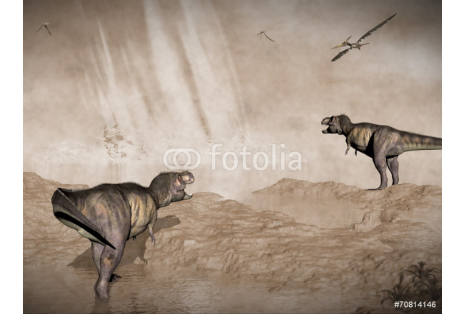 End of dinosaurs due to meteorite impact in Yucatan, Mexico - 3D 64239