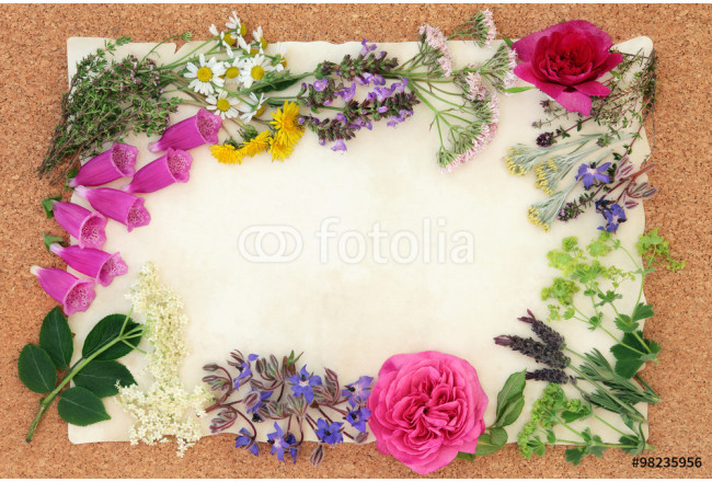 Flower and Herbal Medicine 64239