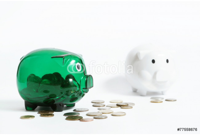 Two piggy banks on the white background 64239
