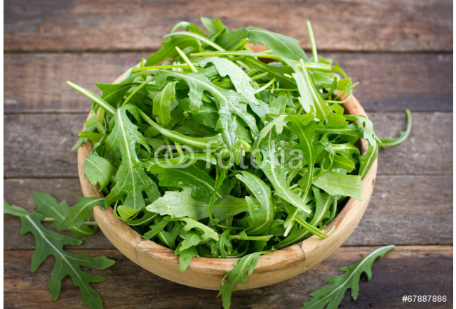 Fresh arugula salad 64239