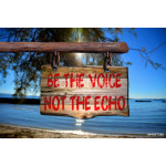 Be the voice not the echo motivational phrase sign 64239