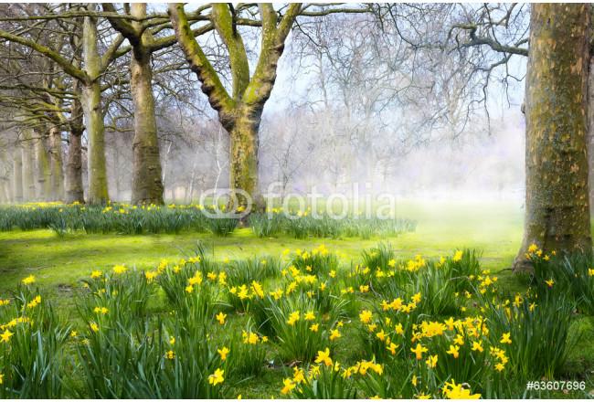Bild Auf Leinwand Art Spring Flowers In The English Park Die