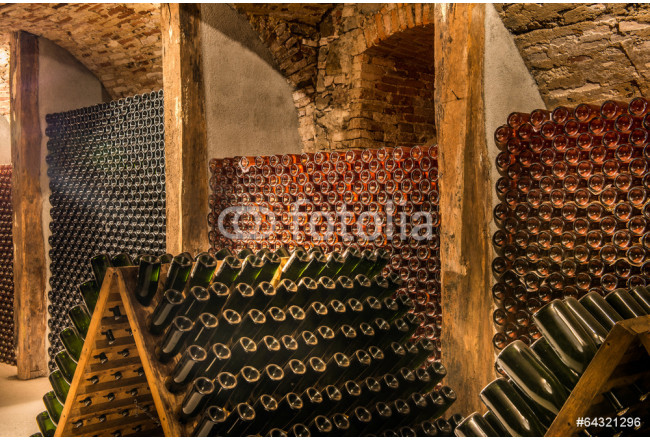 Wine cellar, a row of champagne bottles 64239