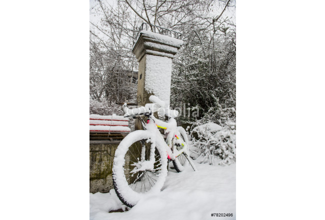 Bicycle covered in snow 64239
