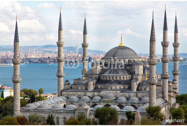 Art painting Blue Mosque 64239