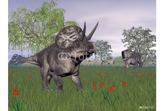 Painting Zuniceratops dinosaurs in nature - 3D render 64239