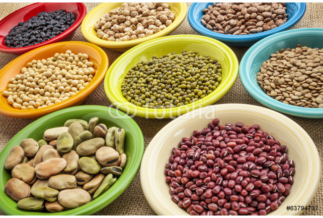 variety of beans in bowls 64239