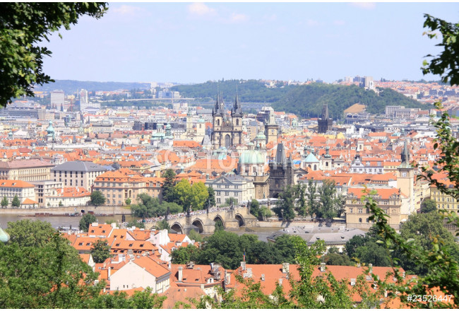 The View on Prague's Roofs 64239