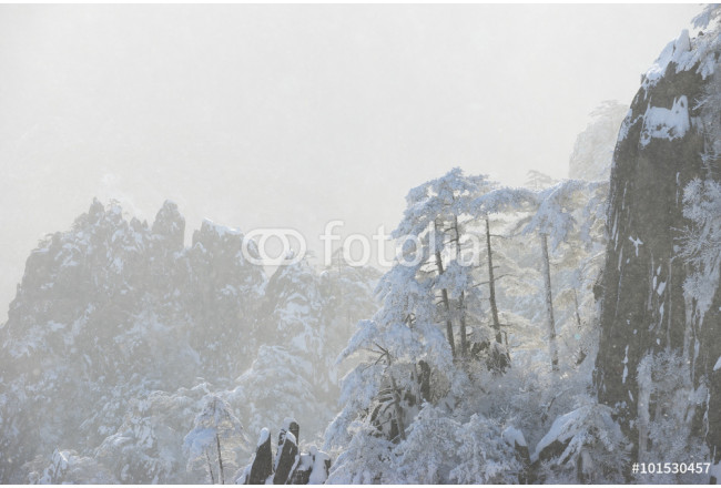 snow scene of Huangshan hill in Winter 64239