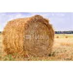Dry hay stacks on countryside field during harvest time 64239