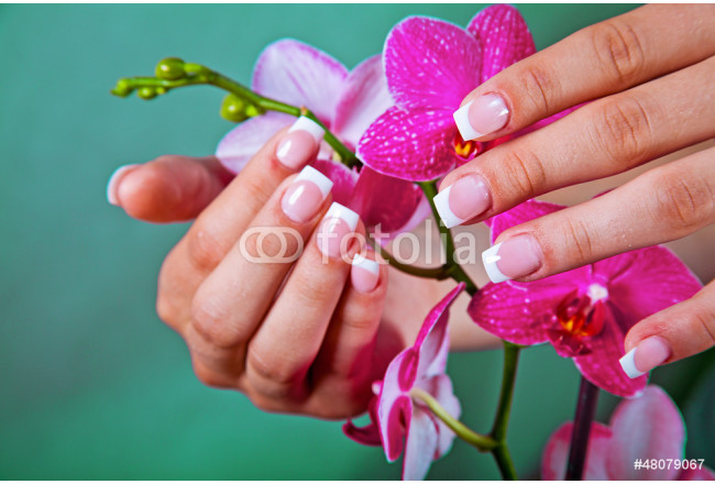 Woman's french manicure and pedicure 64239