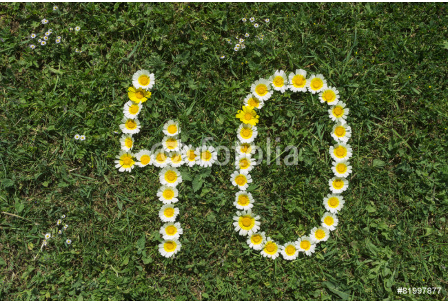 Obraz nowoczesny Numeral 40 of blossoms in gras 64239