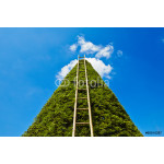 Ladder to heaven 64239