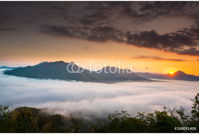 Mountain Morning Mist of Thailand 64239