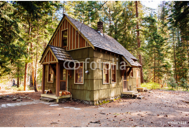 Ranger Station Cabin in the Forest 64239